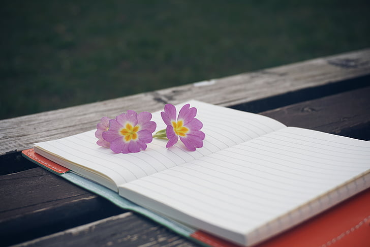 bench, flower, notebook, pen, wooden, notepad, wooden table