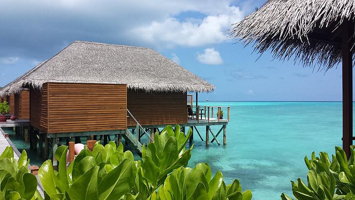 vacances, Maldives, Villa