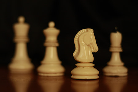 horse, chess, game, strategy, board, play, leisure