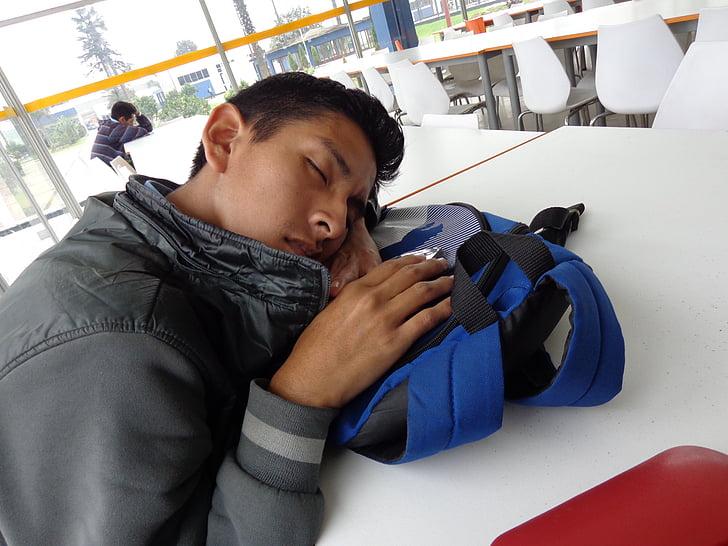 dream, sleep, resting