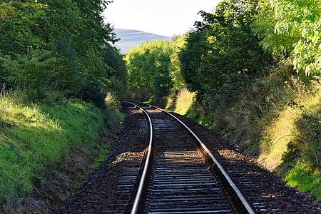 jernbanen, jernbane spor, jernbane, jernbanen, linje, stål, Metal