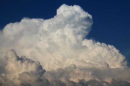 błękitne niebo, Chmura, Latem, Natura, niebieski, Pogoda, tła