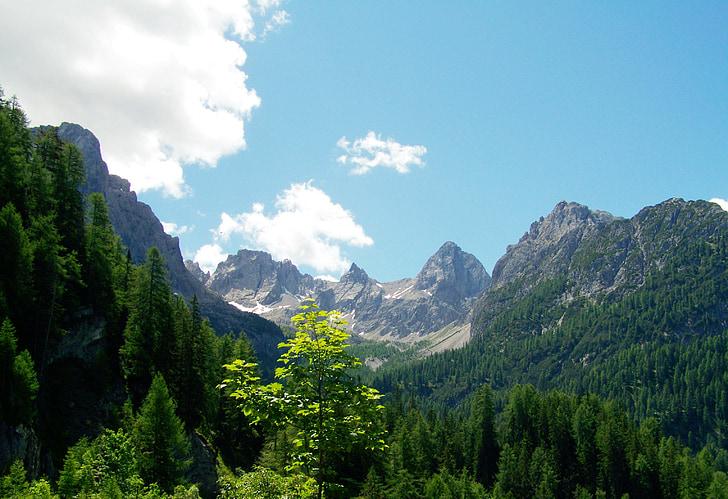 paisatge, muntanyes alpines, pics