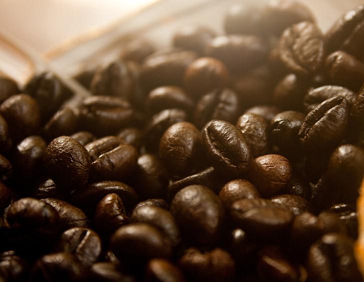 kavna zrna, kava, kofein, pijača, aromo, rjava, espresso
