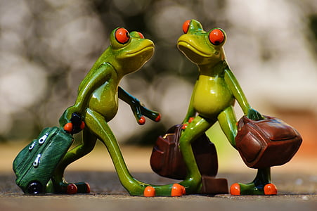 frogs, funny, travel, luggage, holdall, go away, holiday