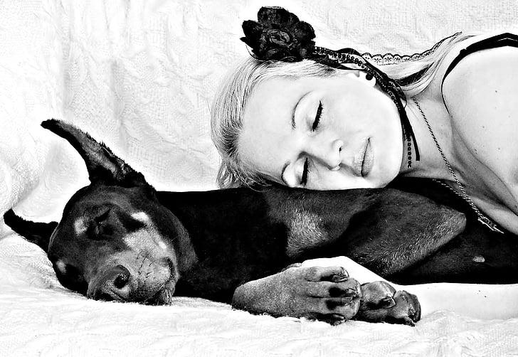 hitam putih, anjing, wanita berambut pirang, Doberman, tidur, Cinta