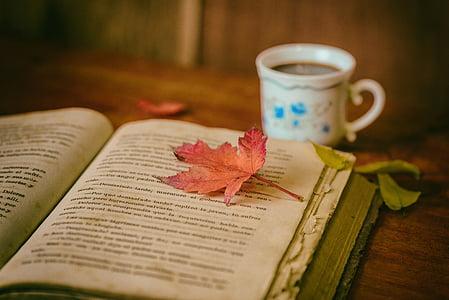 Bladeren, boeken, Kleur, koffie, Beker, Stilleven, boek