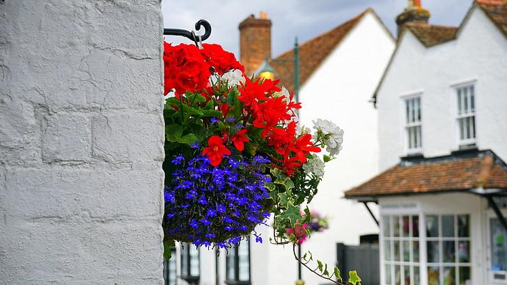 kvety, Ulica, dekorácie, jar, letné, rastlín, Kvetinová