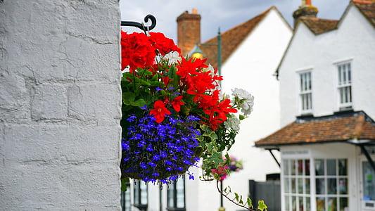 lilled, Street, teenetemärgi, kevadel, suvel, taim, õie