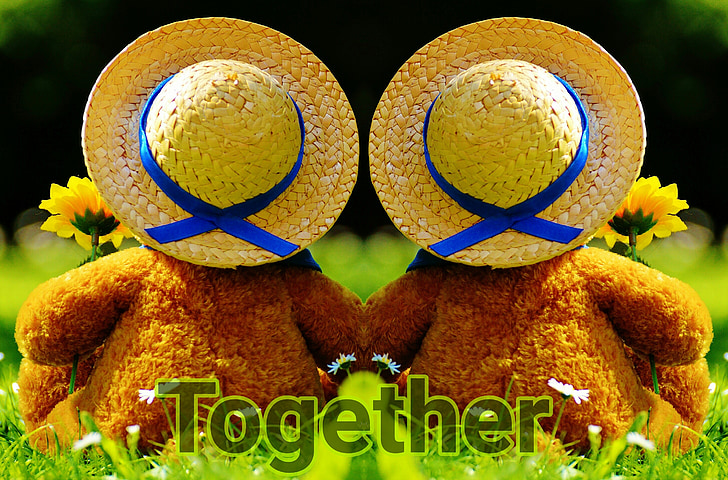 look together into the future, together, bear, bears, connected, togetherness, pair