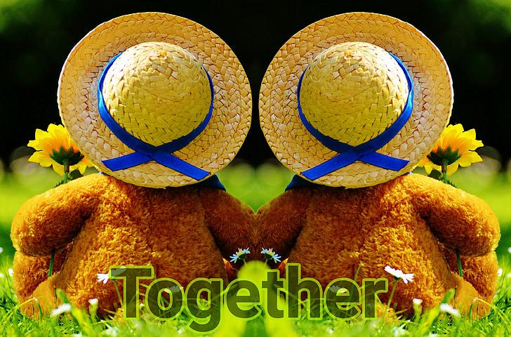 buscar junts en el futur, junts, ós, óssos, connectat, Unió, parell