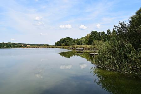 Λίμνη, νερό, φύση, προκυμαία, τοπίο, Καλάμι, πράσινο