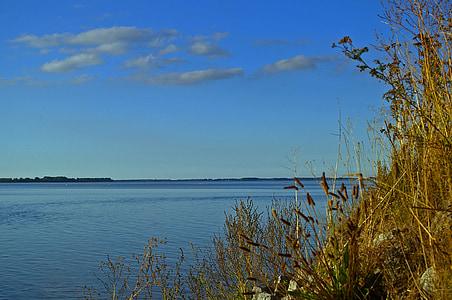 camí de l'aigua, Bodden, lloc de descans, lloc de pesca, peix, canya, Banc
