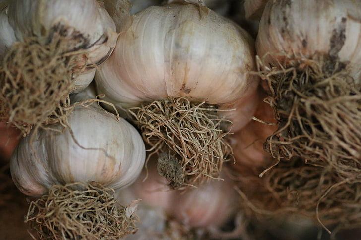 cesnak, korenie, Kuchyňa, chuť, jesť, trhu