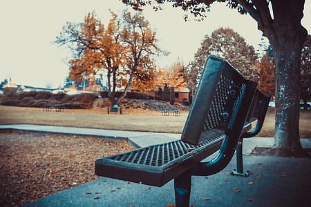 jesień, upadek, pozostawia, Park, Ława, na zewnątrz, Natura