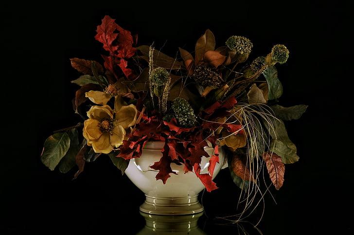 blomster, steg, kronblad, vase, essenser, blomst, vaser