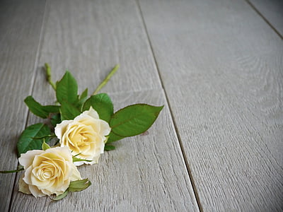 roses, bouquet of roses, bouquet, white, yellow, top view, romantic
