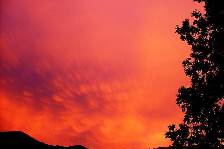 céu, para a frente, nuvens, pôr do sol, céu da noite, clima tempo, atmosfera