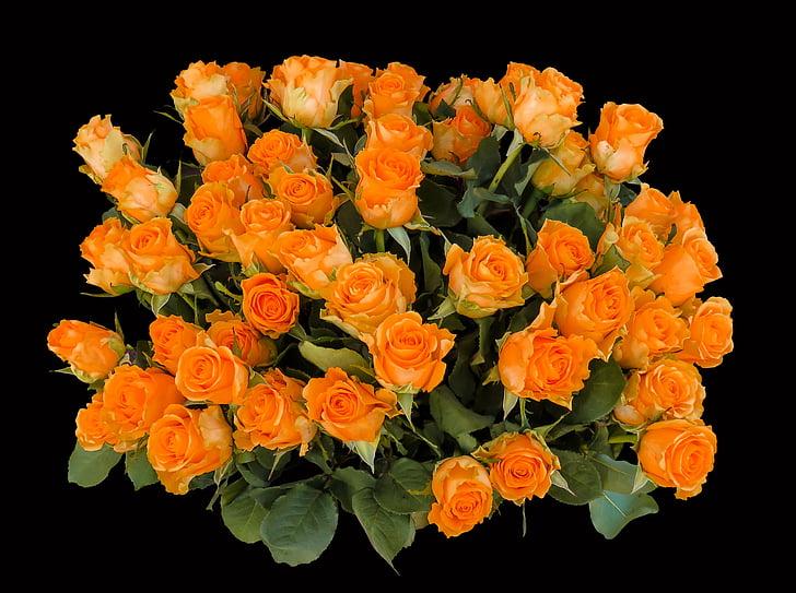 emociones, Rosas, cumpleaños, Saludo, ramo de la, Feliz cumpleaños, Felicitaciones