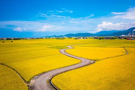 countryside, farm, field, landscape, outdoors, road, rural