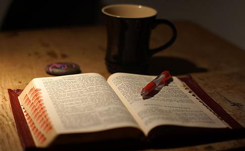 llegir, tasses, Bíblia, llibre