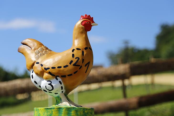 kana, liha, poulet, siipikarjan, Ruoka, maatalous, Farm