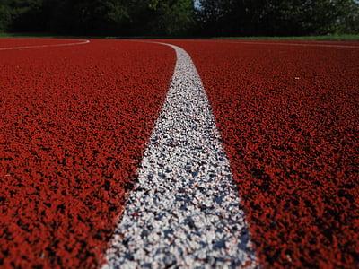 línia, marca, ratlles, blanc, pista de tartan, carrera, pista