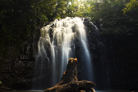 vee, Falls, juga, Logi, Cairns, metsa, loodus