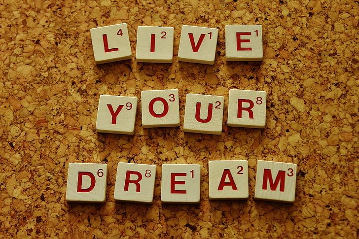 vive tu sueño, motivación, incentivos, deseos, perseguir los objetivos, hacer realidad los sueños, valor