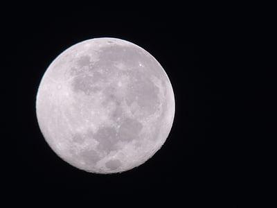 Lluna, ple, Luna, espai, llum de lluna, lunar, l'astronomia