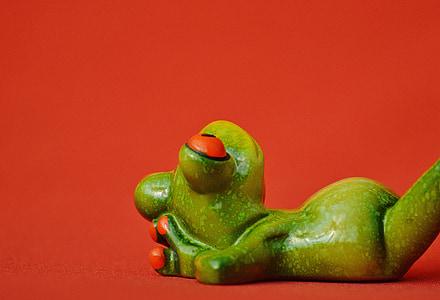 žaba, klamstvo, uvoľnené, milý, zvyšok, obrázok, smiešny