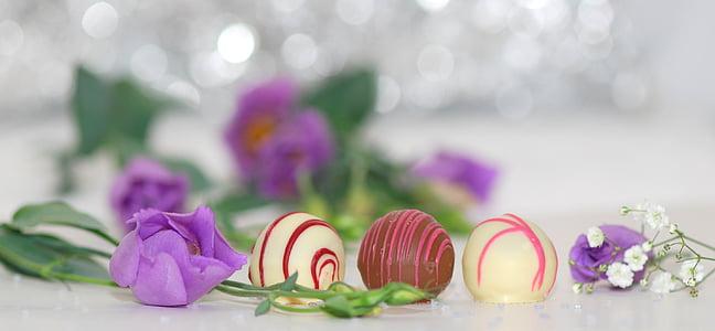chocolates, chocolate, nibble, sweetness, gourmet, sweet, candy