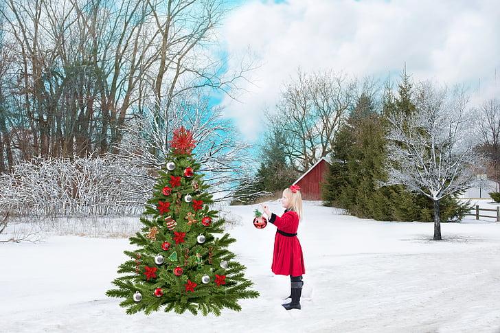 Nadal, vermell, neu, arbre, noia, decoració, vacances