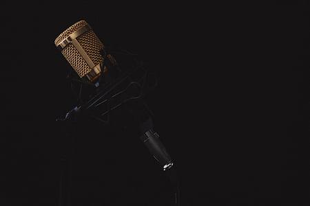 мікрофон, музика, звук, мікрофон, музичні, аудіо, вокальний