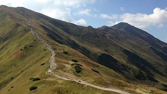 western tatras, mountains, nature, tourism, the national park, landscape, mountain