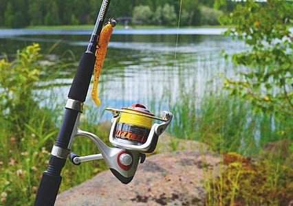 fish, fish equipment, angel, fishing rod, fishing line, hobby, fishing reel