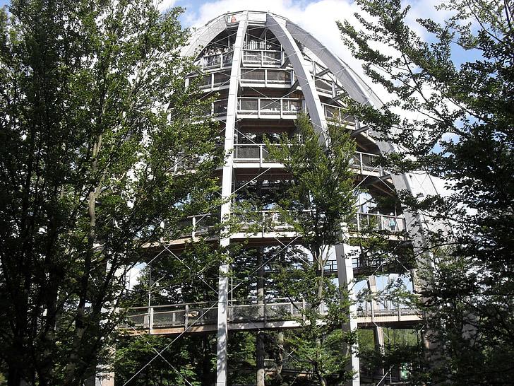 Tree Top walk, Neuschönau, Bayerischer Wald, Pfad, Turm, Struktur, aus Holz