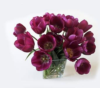 tulipes, RAM, Gerro, flors, porpra, primavera, molts