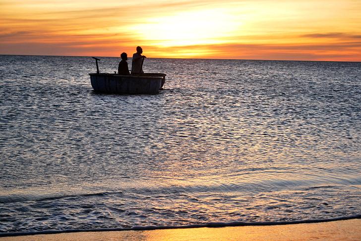 recollir les meduses, meduses, Marina salari, tien gat, Alba, Alba en el sou de mar, meduses recollir la nòmina de mar
