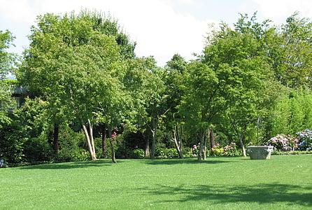 ENEA Κήπος, τοπίο, δέντρο, φυτό, Rapperswil, δέντρα, χλόη