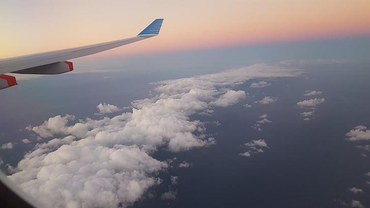 siivet, matkustaa, ilmailu