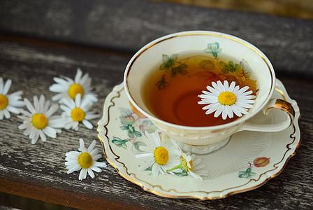 Cup, tee, porselen, drikke, innredning, pause, fortsatt liv
