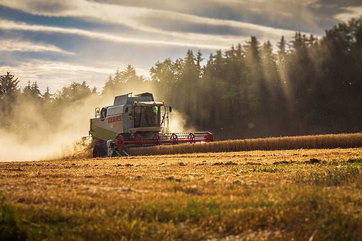 CLAAS, lexion, recol·lectora, collita, l'agricultura, Segadora, cereals