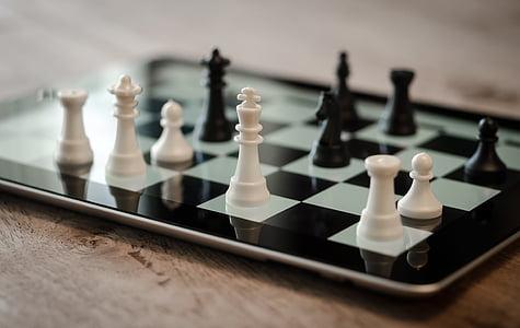 chess, ipad, 3d, digital, strategy, business, success