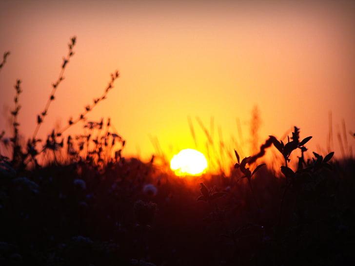 Resultado de imagem para gifs nascer do sol