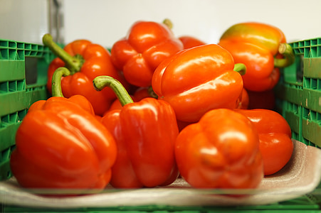 sarkana, pārtika, veselīgi, pipari, dārzenis, svaigu, bioloģiskās lauksaimniecības