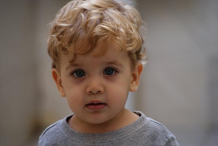 dijete, izgled, dječak, tip, portret, plavuša