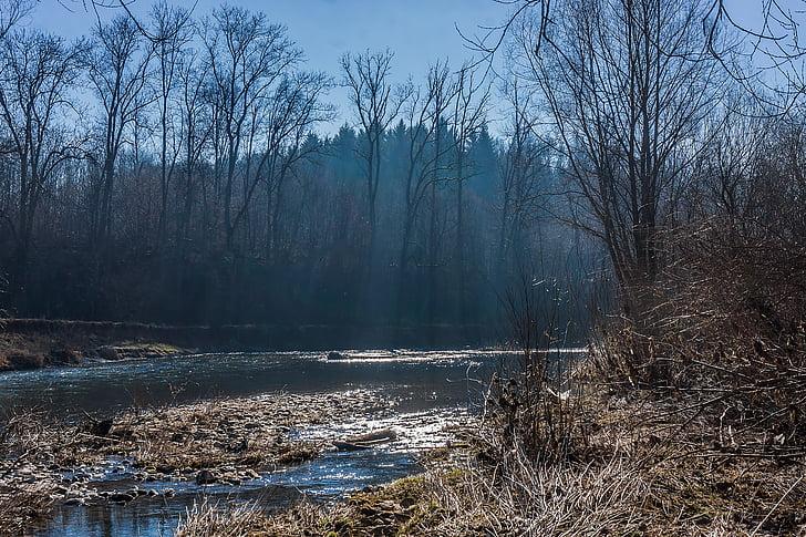 l'aire lliure, arbres, riu, primavera, boira