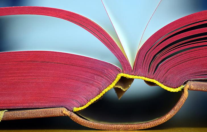 llibre, vell, llibre antic, va llançar, obrir llibre, llegir, literatura