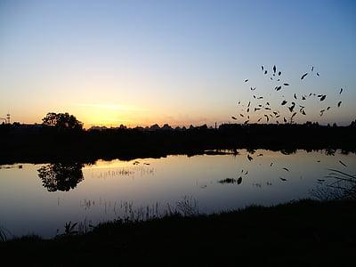 at dusk, silhouette, sky